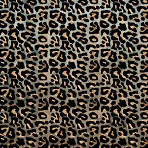 Cheetah / Snow