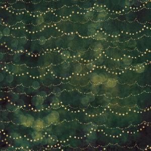 Fairy Lights / Bokeh Kale